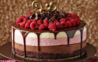 chocolate-raspberry-mousse-cake-featured-320x202