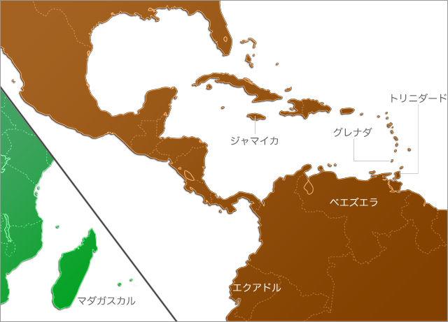 南米カカオ
