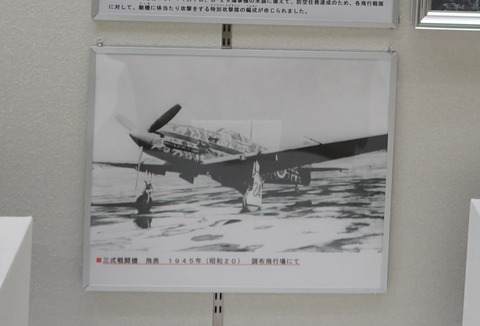 DSC09467 (2)