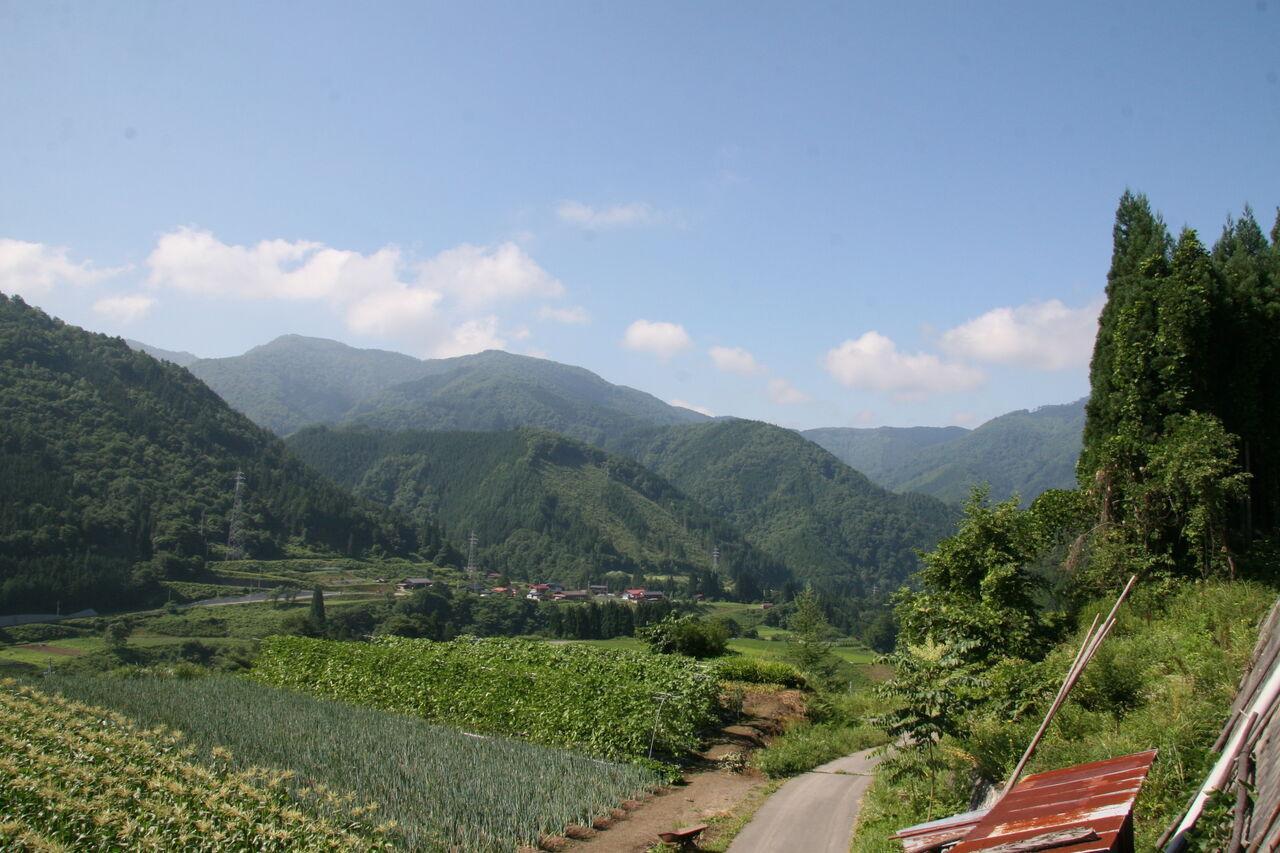 「適度な起伏のある眺望の良い土地は生体に良い影響を与える」