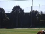 公式野球場