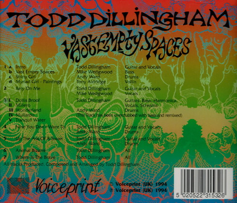 TODD DILLINGHAM - VAST EMPTY SPACES (1994) B