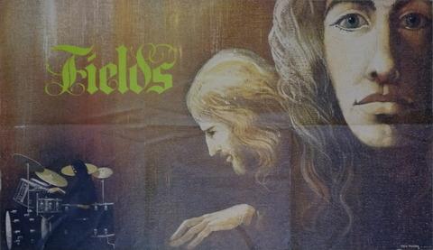 Fields - same (1971) poster