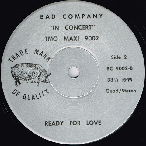 BAD COMPANY - IN CONCERT b
