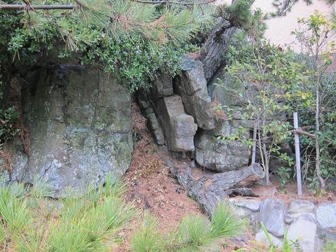 awaji00195