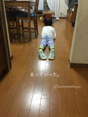 いくじ171001-2