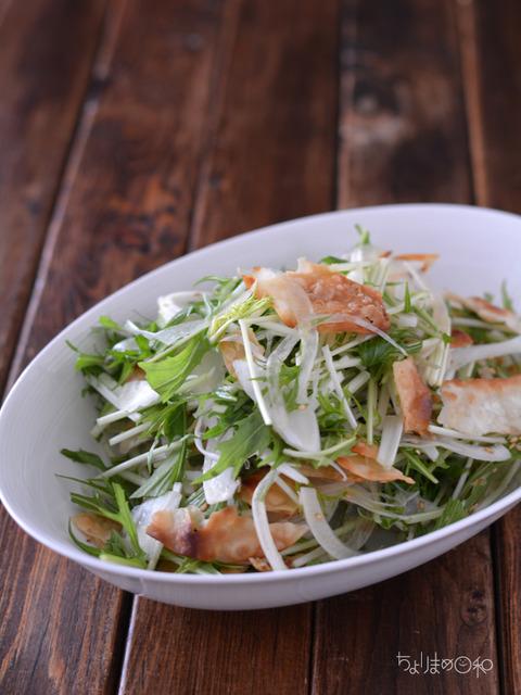 晩ごはん190403_餃子の皮の水菜サラダ