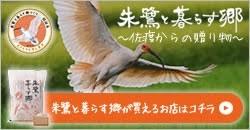 tokiban_s
