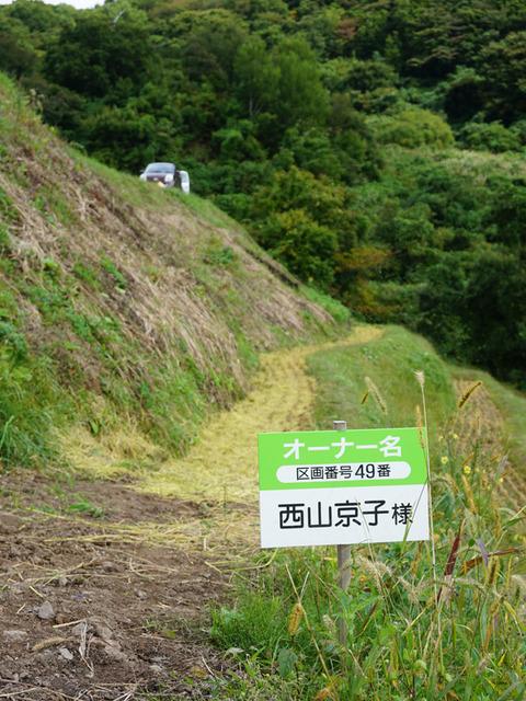 佐渡2017-1008_棚田稲刈り10