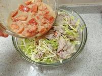 トマトごまだれの豚しゃぶサラダP2