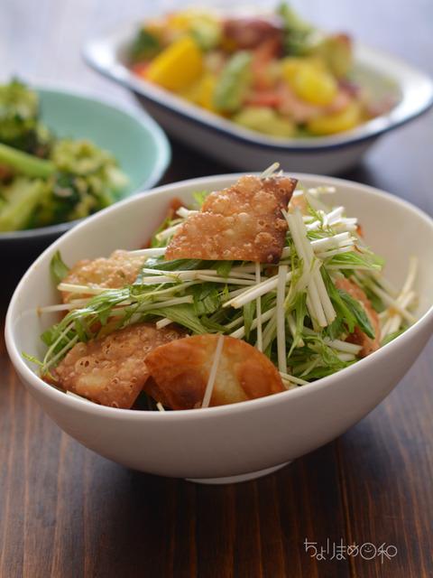 晩ごはん180319_揚げ餃子の皮と水菜のサラダ