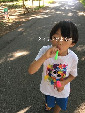 いくじ170603-2