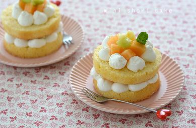 ミニショートケーキ_TOMIZ1812T
