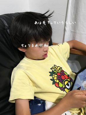 いくじ190706