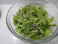 水菜の炒めにんじん塩昆布和えP