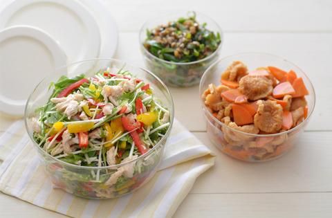 ササミと水菜の塩麹マリネR9
