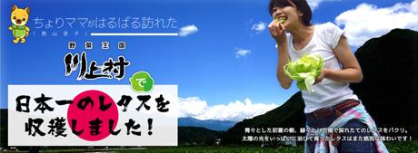 ちょりママが触れた!日本一のレタス産地 川上村のヒミツ。