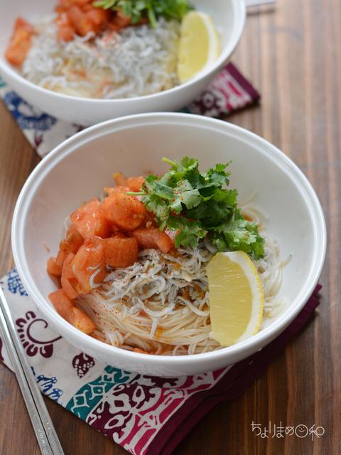 しらすのエスニック涼麺3