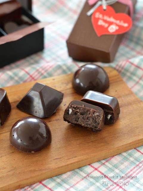 二層のチョコ&クッキーチョコ_ショコラキューブビター2001-4