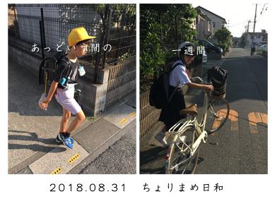 いくじ180831