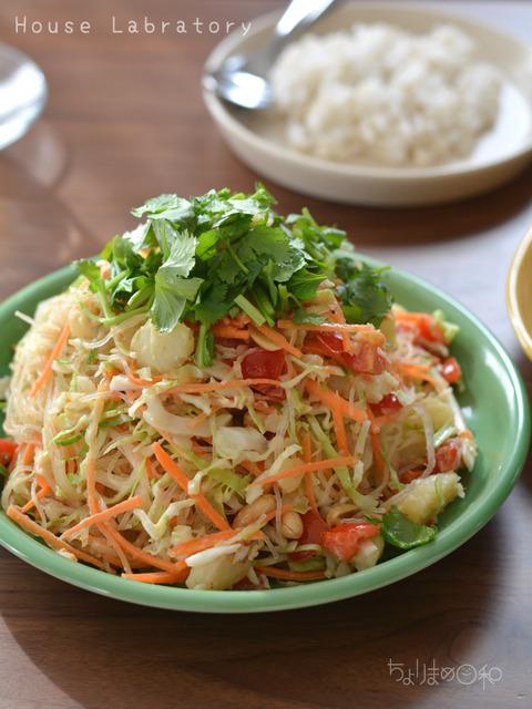 うちラボ181121_ミャンマー料理_レインボーサラダ