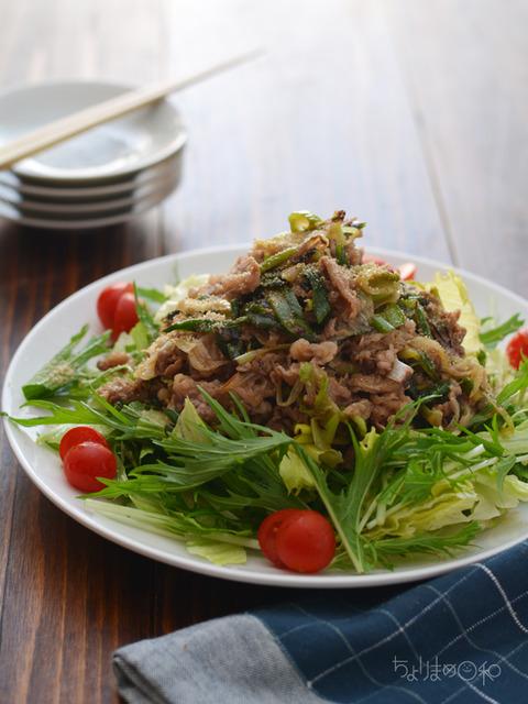 牛ねぎ炒めのっけサラダ