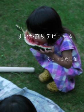 ぐりyuiすいか割り0718