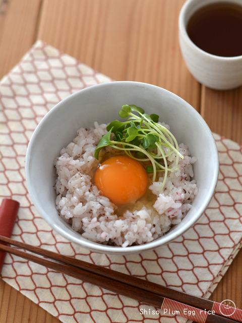 卵かけしそ梅ごはん_スパイス1904-2