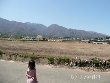 オイシックス農作業ツアー5