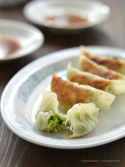 たっぷり野菜餃子140111