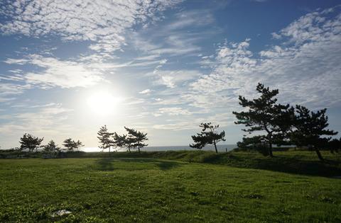 佐渡稲刈り161001-18