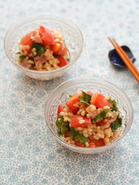 トマトともち麦のサラダR_CALNA08-2