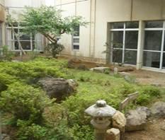 文化会館中庭02