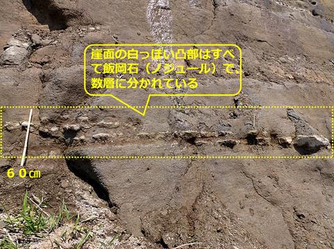 銚子ジオ散歩197図⑥