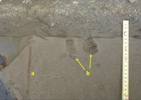 50_転石の垂直断面の生痕