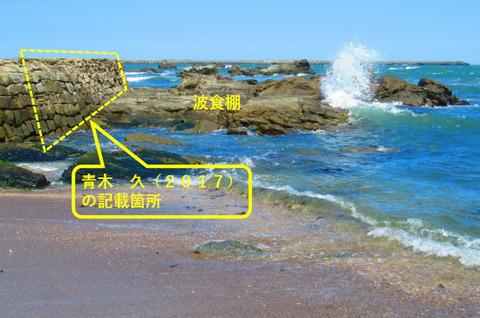 銚子ジオ散歩189図③