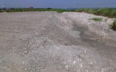 貝殻を含む浚渫土①