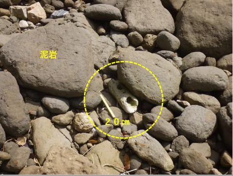 銚子ジオ散歩158図①