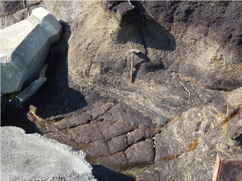 New磯見川の泥炭3