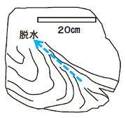 52_脱水構造図解Ed