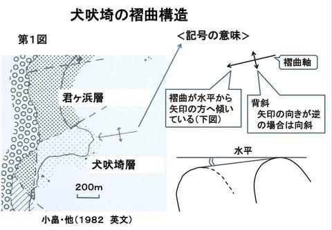 12A_犬吠埼の褶曲構造