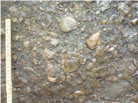 礫種2Ed
