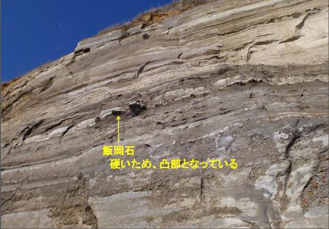62崖地での飯岡石の産状