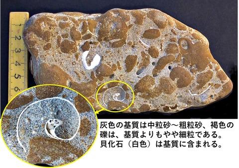 銚子ジオ散歩214図3