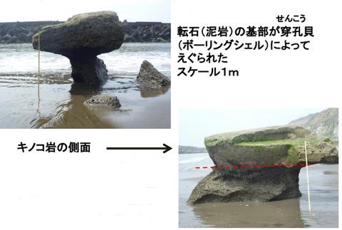 屛風ヶ浦のキノコ岩Ed2