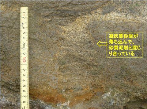凝灰質砂岩の落ち込みEd