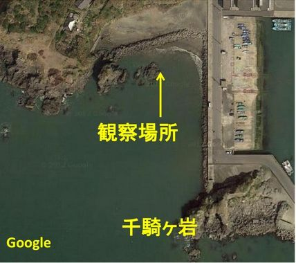 千騎ヶ岩近辺Google