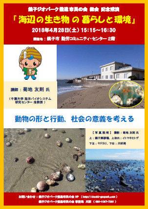 20180428海辺の生き物の暮らしと環境Ver3