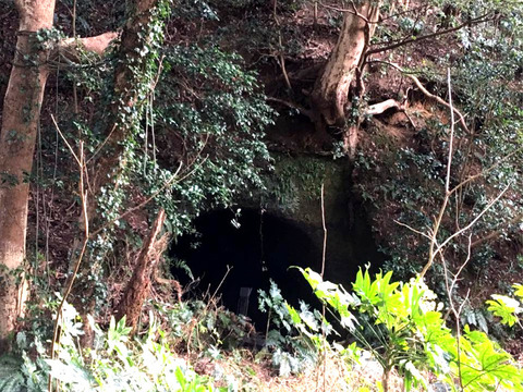 竜の井付近7Ed