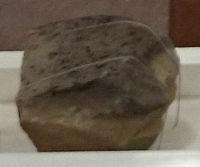 ⑥波止山化石岩Ed2